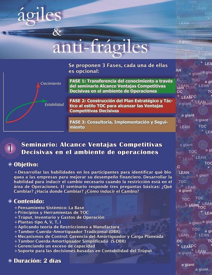 ágiles y antifrágiles (2) - Marún Consultores